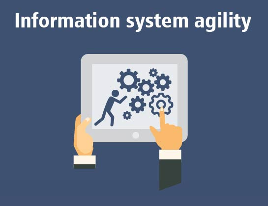 Information system agility